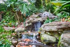 Paraíso de la cascada del jardín Foto de archivo libre de regalías