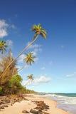 Paraíso de la isla Fotos de archivo libres de regalías