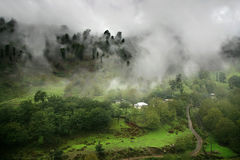 Paraíso de niebla Foto de archivo