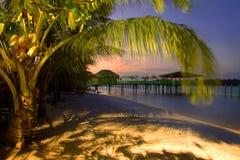 Paraíso de Palm Beach imagem de stock