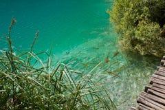 Paraíso de Plitvice fotografía de archivo