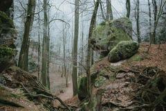 Paraíso del bohemio del parque nacional Fotos de archivo