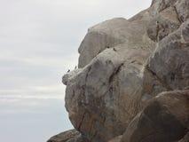 Paraíso del Brasil, piedra del mono Fotos de archivo