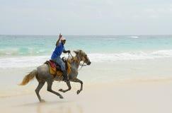 Paraíso del Caribe del caballero Imagen de archivo libre de regalías