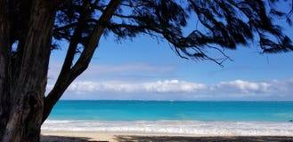 Paraíso delantero de la playa en Hawaii Foto de archivo