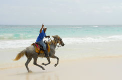Paraíso do Cararibe do cavaleiro Imagem de Stock Royalty Free