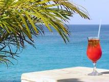 Paraíso do cocktail imagens de stock