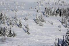 Paraíso do inverno Imagens de Stock