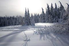 Paraíso do inverno Fotografia de Stock