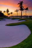 Paraíso do jogador de golfe fotos de stock royalty free