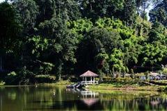 Paraíso do lago de Arunachal Pradesh Fotos de Stock Royalty Free
