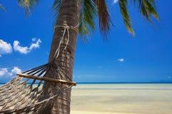Paraíso e hammock Imagens de Stock