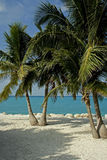 Paraíso encontrado Fotos de Stock Royalty Free