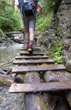 Paraíso eslovaco, ESLOVAQUIA - 5 de julio: Caminante desconocido en Slovaki Imágenes de archivo libres de regalías