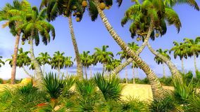 Paraíso havaiano Imagem de Stock