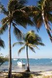 Paraíso mexicano, tropical da costa, com barco branco Imagem de Stock