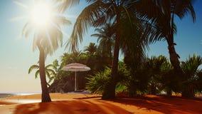Paraíso na rendição da ilha 3d de Havaí Imagem de Stock
