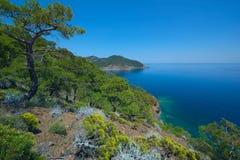 Paraíso na terra Imagens de Stock Royalty Free
