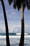 Paraíso que practica surf imagen de archivo