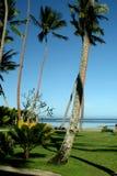 Paraíso tropical fotografía de archivo libre de regalías