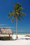 Paraíso tropical Imagens de Stock Royalty Free