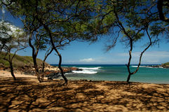 Paraíso tropical Foto de Stock Royalty Free