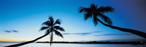 Paraíso tropical Fotografia de Stock Royalty Free
