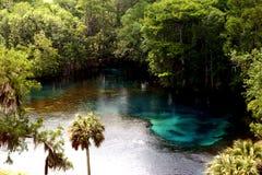Paraíso tropical imagens de stock