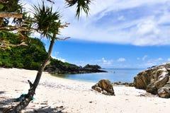 Paraíso tropical das palmeiras, da areia branca, do mar de turquesa e do céu ensolarado azul profundo em Zamami, Okinawa, Japão fotografia de stock royalty free