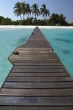 Paraíso tropical de la isla - Maldives Fotografía de archivo libre de regalías