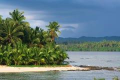 Paraíso tropical de la palmera imagen de archivo