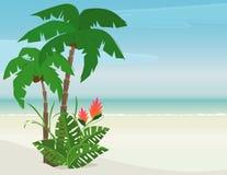 Paraíso tropical de la playa Fotos de archivo libres de regalías