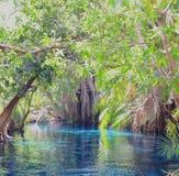 Paraíso tropical em África! foto de stock