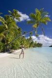Paraíso tropical - las islas de cocinero Imagenes de archivo