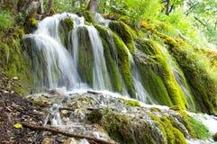 Paraíso verde Imagen de archivo