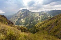 Paraíso verde en Sri Lanka fotografía de archivo