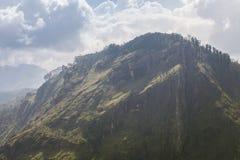 Paraíso verde en Sri Lanka imagenes de archivo