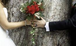 Para ślubu para zdjęcia royalty free
