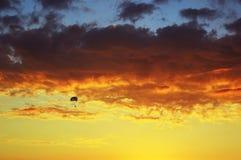 Плавание Para на заходе солнца Стоковое Изображение RF