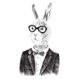 Para arriba vestido muchacho del conejito en estilo del inconformista Foto de archivo