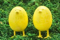 Gula ägghönor Arkivfoton