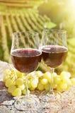 Para av wineglasses och druvor Bellinzona Royaltyfria Foton