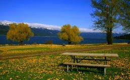 Para baixo pelo lago 7 imagens de stock