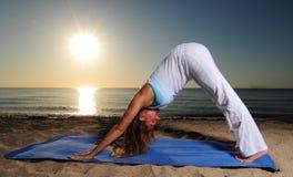 Para baixo - pose da ioga do cão do revestimento Fotos de Stock Royalty Free