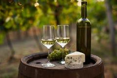 Para białego wina szkła na drewnianej baryłce Obraz Stock