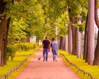 Para chodzi ich psa w parku zdjęcie royalty free