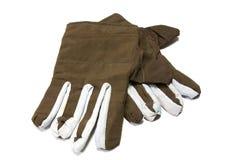 Rękawiczki Zdjęcia Stock