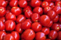 Para comer sano: tomates Fotografía de archivo libre de regalías