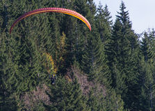 Para Glider Stock Image