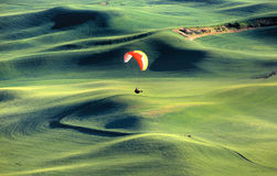 Para glider Stock Images